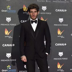Quim Gutiérrez en la alfombra roja de los Premios Feroz 2015