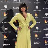 Yolanda Ramos en la alfombra roja de los Premios Feroz 2015