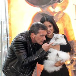 Antonio Banderas y Salma Hayek juegan con un gato en la presentación de 'El gato con botas' en Moscú