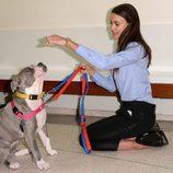 Irina Shayk jugando con un perro de un refugio de animales de Nueva York