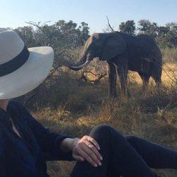 Nicky Hilton observando un elefante en su luna de miel