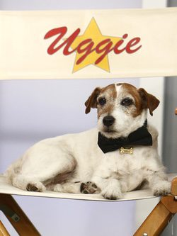 El perro actor Uggie the Dog