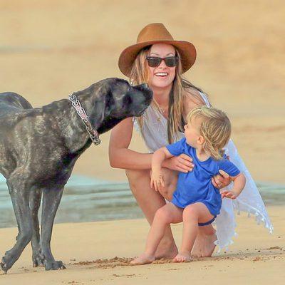 Olivia Wilde con su hijo Otis jugando con un perrito