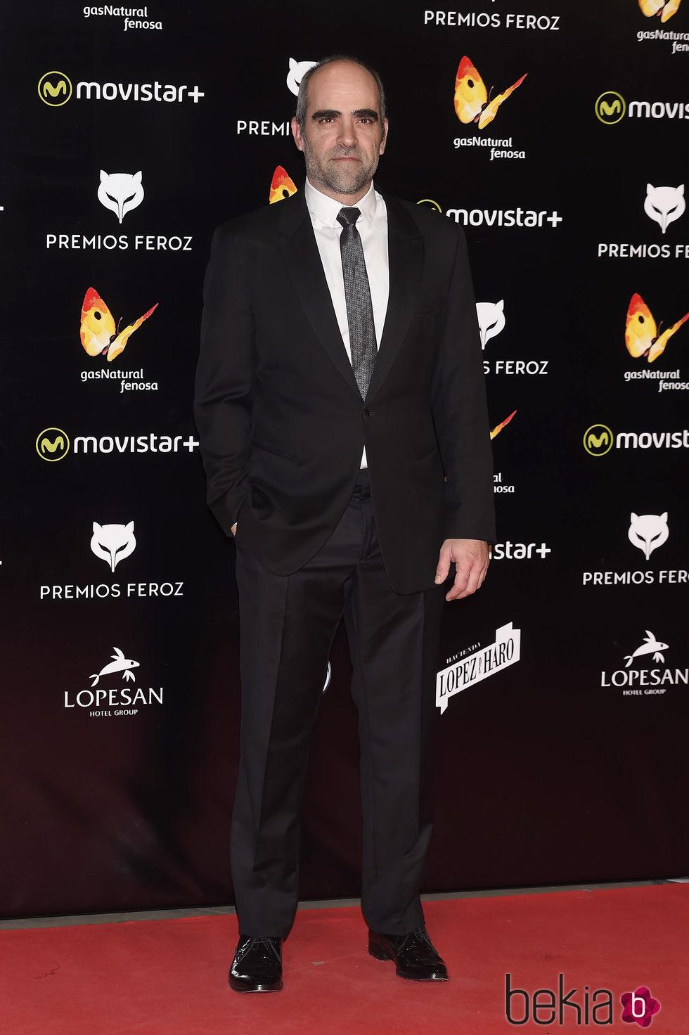 Luis Tosar en la alfombra roja de los Premios Feroz 2016