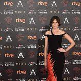 Nieves Álvarez en la alfombra roja de los Premios Goya 2016