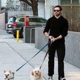 Hugh Jackman pasea con sus perros por Nueva York