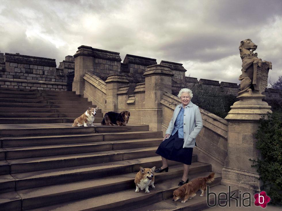 La Reina Isabel II con sus perros en su 90 cumpleaños
