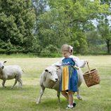 Estela de Suecia con dos ovejas en el Día Nacional de Suecia 2016