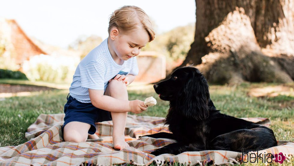 El Príncipe Jorge de Cambridge dando helado a su perro en su tercer cumpleaños