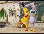 Trailer oficial de 'Angry Birds 2: La película'